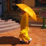 Cao Dai Tapınağı'nda bir rahip